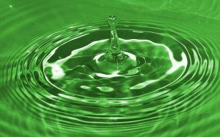 Почему появляется зеленая моча