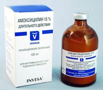 лечение цистита амоксицилином