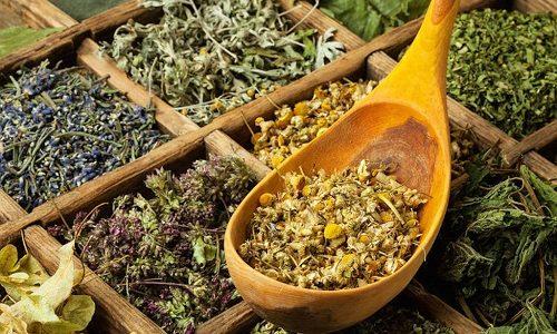 В состав фитосборов входят травы, которые обладают противовоспалительным, противомикробным, спазмолитическим и мочегонным действием