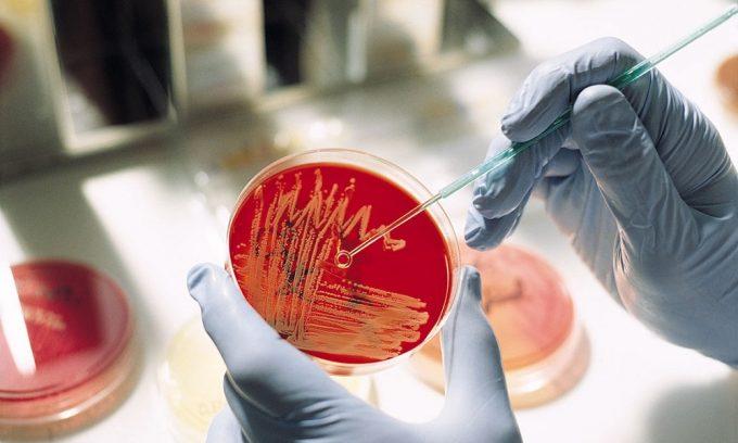 Женщинам обязательно нужно сделать бакпосев. Это лабораторное исследование предполагает соскоб отделяемого с уретры, влагалища и цервикального канала и помещение его в благоприятную для развития микробов среду. Этот анализ позволяет определить возбудителя болезни и назначить адекватное лечение