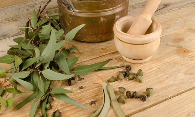 Стакан листьев эвкалипта, например, заваривают литром кипятка и дают настояться несколько часов. Полученным средством нужно спринцеваться