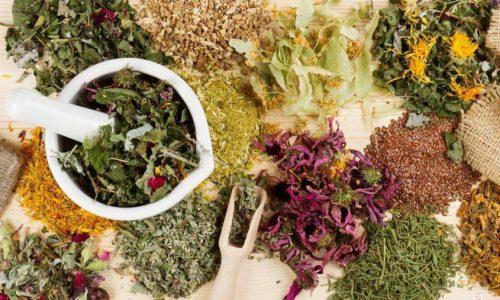 В лечебных и профилактических целях также можно применять некоторые лекарственные растения, широко используемые народной медициной, но делать это стоит только после консультации врача