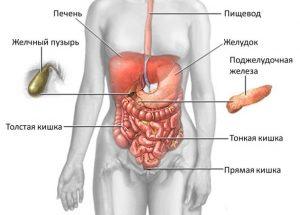 Острий холецистит: причини, признаки, методи лечения