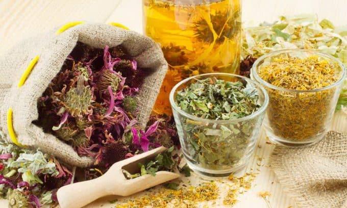Травяной сбор, который можно использовать от цистита беременным, включает сабельник, гусиную лапчатку, брусничный лист, боровую матку, володушку, зимолюбку и листья бадана